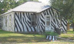 Zebra Stuff for the House   Pin it Like Website