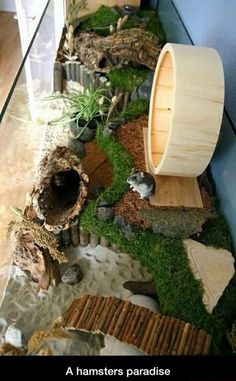 Such a brilliant way to make a pets house seem like it belongs in the decor, without all the bulky plastic objects to go with.