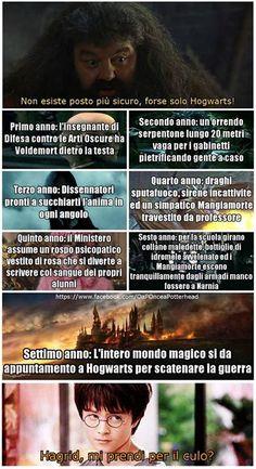 Super Funny Memes About Girls Humor Love Harry Potter Ideas Harry Potter Wattpad, Harry Potter Tumblr, Harry Potter Anime, Harry Potter Outfits, Harry Potter Jokes, Harry Potter Fandom, Harry Potter World, Harry Potter Hogwarts, Voldemort