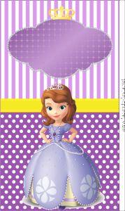 kit princesa sophia tubete