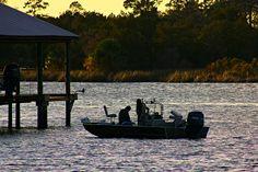 fb: http://www.facebook.com/#!/jillianbogardephotography   flickr: http://www.flickr.com/photos/jillianelena/6449720397/in/photostream/   tumblr: http://jillianelena.tumblr.com/    #fishing #photography #florida