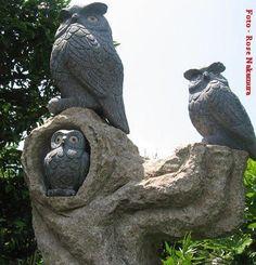 http://www.dihitt.com/barra/porque-a-coruja-e-considerada-uma-ave-sabia… #fotosdecoruja,#corujas