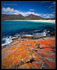 Tasmania, nature at her best! Tasmania, Places Around The World, Around The Worlds, Places To Travel, Places To Go, Australian Photography, Rock Pools, Australia Travel, East Coast