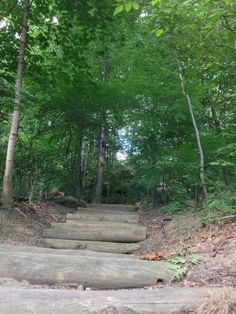 Staircase to the forest. Gorge Metro Park. Cuyahoga Falls, Ohio.