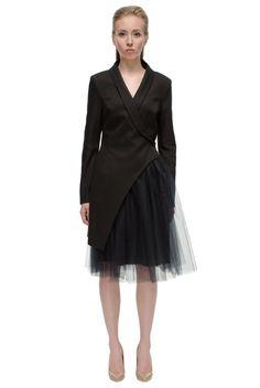Alluring, Elegant Black Swan