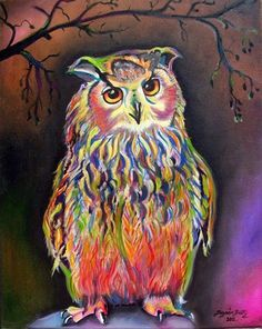 Colourful Owl ~