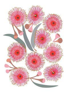 🌸🌺The Pink Eucalyptus Blossom print is part of a series of Australian native flora prints © Jocelyn Proust 2017.🌸🌺 #onwednesdayswewearpink