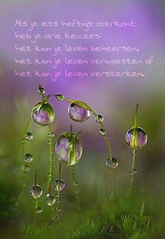 Als je iets heftigs overkomt,heb je drie keuzes;het kan je leven beheersen,het kan je leven verwoesten.........of.............. het kan je leven versterken!...........lbxxx.