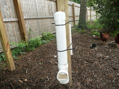 Love these PVC feeders for in the chicken run.