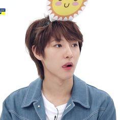 Winwin, Taeyong, Jaehyun, Nct 127, Nct Dream Members, Hotel Trivago, Huang Renjun, Na Jaemin, Kpop Groups