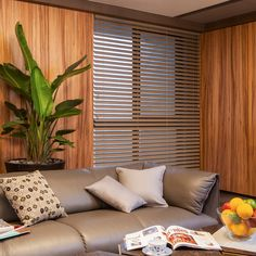 Venetian Blinds for any occasion.