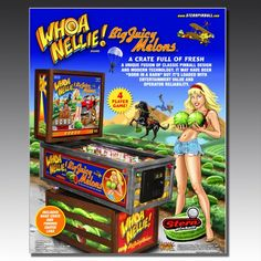 ' Pinball Machine by Stern Luxury Gifts For Men, License Plate Art, Thing 1, Sale Flyer, Classic Toys, Arcade Games, Jukebox, Hanging Out