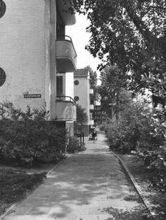 Datering tot: 1981-12-31 Beschrijving: De hoek Slachthuislaan, Vlaardingerdijk, gezien in de richting van de Vlaardingerdijk, hoek Burgemeester Knappertlaan.