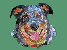 Blue Heeler #dog #artfido #draw #nawden #artsanity #colour #drawing
