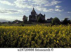photos chateau vufflens - Recherche Google Vineyard, Google, Photos, Outdoor, Outdoors, Vine Yard, Vineyard Vines, Outdoor Living, Garden