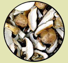 'Forks Over Knives' Mushroom Gravy ... w/ onion, veg broth, Bragg's herbs & spices seasoning, nutr'l yeast, wine, non-dairy milk, flour