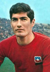 Alberto Quintano Carlos Martinez, National Football Teams, Old Glory, Fifa, Soccer, Sports, Chewing Gum, University, Trading Cards