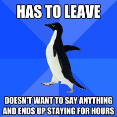 has to leave doesnt want to say anything and ends up stayin - Socially Awkward Penguin