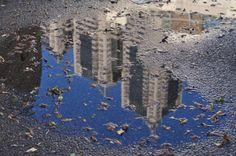 """frxn:  puddle 2012.02.19.sat@shinjyuku  """