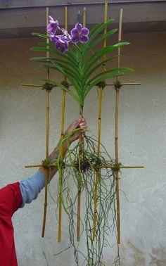 Place on bamboo base