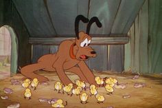 Mother Pluto © Walt Disney