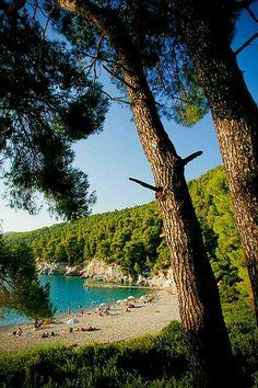 Kastani beach, green and blue, Skopelos Island, Aegean sea Skopelos Greece, Skiathos, Beautiful Islands, Beautiful Beaches, Places To Travel, Places To See, Myconos, Ocean Pictures, Greece Holiday