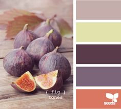 Fig Tones - I have these colors in my closet, but never thought about combining them...hmmmm