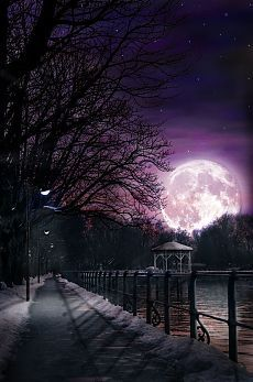 everyday a different color, beautiful gifs, soft goth, nature. images that I like and attract my attention. I hope you'll find images here for your taste too. Moon Shadow, Sombra Lunar, Stars Night, Shoot The Moon, Moon Pictures, Beautiful Moon, Full Moon, Big Moon, Night Skies