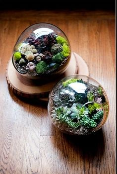 I'm currently obsessed with terrariums - must make one for our living room and hope that it doesn't die on me