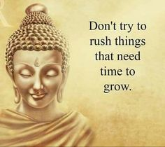 Looking for wise quotes about life? Best Life Quotes & Lessons presents the 25 greatest Wise Quotes and Words of Wisdom from different famous world figures. Buddha Quotes Inspirational, Positive Quotes, Motivational Quotes, Inspirational Speeches, Positive Vibes, Wisdom Quotes, Me Quotes, Fed Up Quotes, Buda Quotes