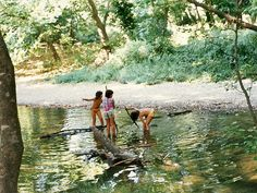 https://flic.kr/p/qDJeL | Mantoudi Evia | playing by the river, summer 1995