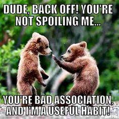 Bad association spoils useful habits