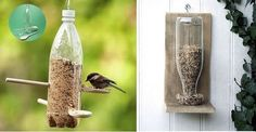comederos para pájaros con botellas de plástico