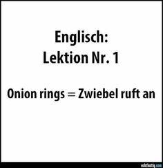 Zwiebel