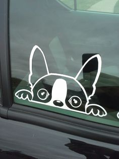 The Dex G Boston Terrier Window Decal by MiniFrench on Etsy, $8.00