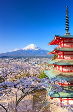 Fuji with Chureito Pagoda, Fujiyoshida, Japan. Fuji with Chureito Pagoda , Kyoto Japan, Japon Tokyo, Japan Sakura, Japan Japan, Japan Art, Japan Travel Tips, Asia Travel, Monte Fuji Japon, Places To Travel