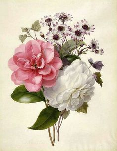 Marie Anne - A Spray of Flowers  19th century