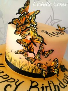 Hand Painted Sunset Butterfly Cake