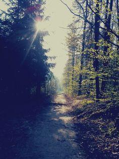 morning jogging <3