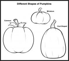 how to draw pumpkins step 1