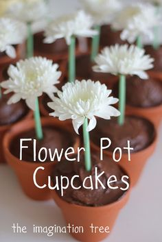 Easy Flower Pot Cupcakes - The Imagination Tree. Use green straws to make stems for fresh flowers.