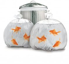 Suck UK Bags of Fun Goldfish Pattern Plastic Trash Bags