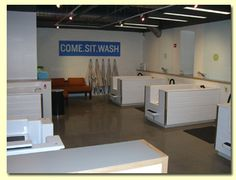 Our self serve dog wash tubs in our camden lbc location great for diy dog wash solutioingenieria Images