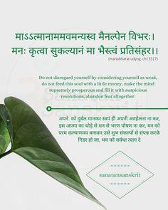 Sanskrit Quotes, Sanskrit Mantra, Vedic Mantras, Sanskrit Words, Hindi Quotes, Qoutes, Empathy Quotes, Sanskrit Language, Gernal Knowledge
