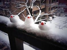 Java sparrows of snow Snowman Photos, Ice Art, Snow Sculptures, Snow Art, Snow And Ice, Pretty Birds, Winter Fun, Land Art, Winter Scenes