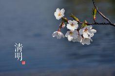 清明 Clear and Bright Apr 5 Twenty-four solar terms in China (4) by Jeriff Cheng, via Flickr  www.SpaceWorksFengShui.com  #FengShui London UK