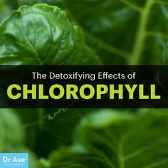 Chlorophyll benefits - Dr. Axe