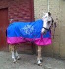 Customers wearing the KP Equestrian range! Equestrian, Range, Horses, Animals, Cookers, Animales, Animaux, Horseback Riding, Animal