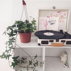 water color around the room...think of place for record player also <3 <3 house plants