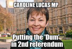 Putting the 'Dum' in referendum Brexit Humour, Caroline Lucas, Vote Leave, Jeremy Corbyn, Green Party, Conservative Politics, Liverpool Fc, Politicians, Bullshit